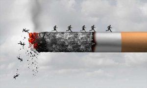 Read more about the article สารที่อยู่ในบุหรี่ ความรู้เกี่ยวกับบุหรี่